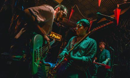 Noah Pino Palo lanza 'Selvas (Selecciones Instrumentales)'
