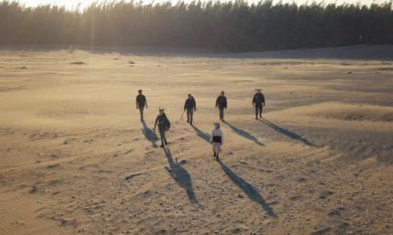 Japónica presenta «Los 4 elementos» en show online